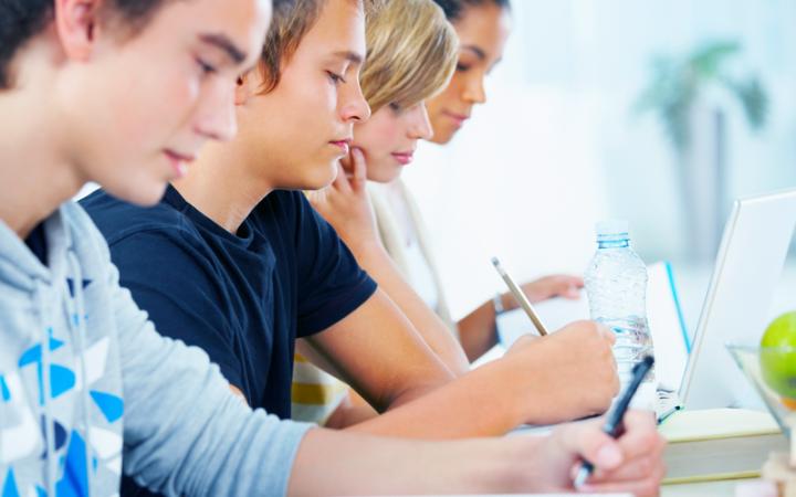Odzież szkolna ze znakowaniem dla szkół, uniwersytetów i placówek dydaktycznych.